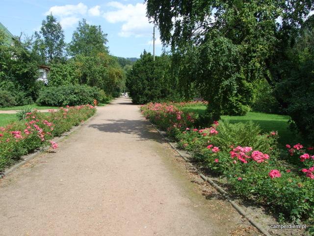 w parku w Ustroniu