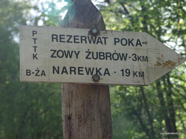 szlak do Zagrody Żubrów