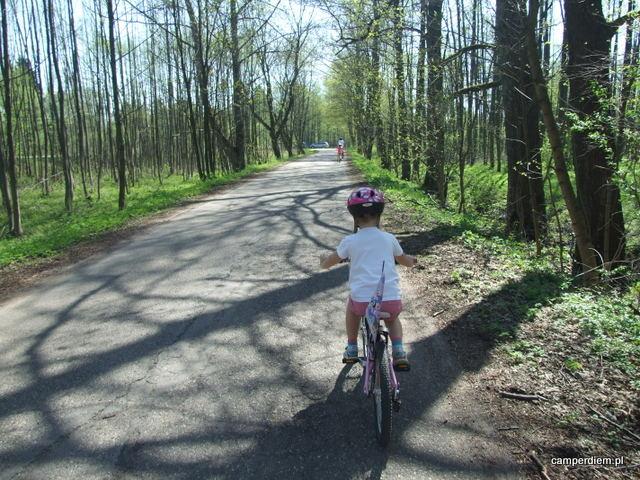 przejażdżka rowerowa po Białowieży