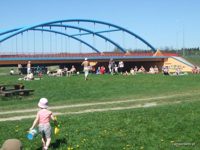 piknik przy parku dinozaurów