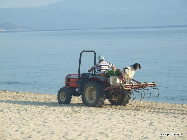 czyszczenie plaży w Nea Roda (ale tylko przy beach barach)