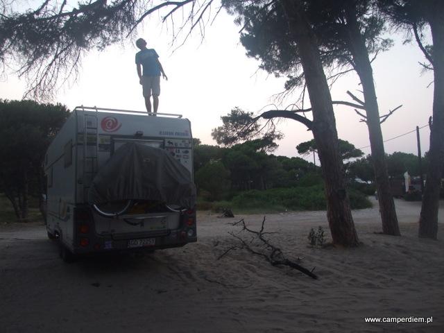 usuwanie konaru wiszącego nad kamperem