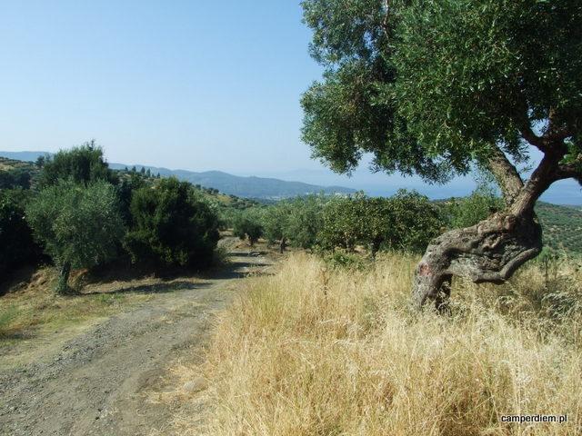 okolice Parthenonas