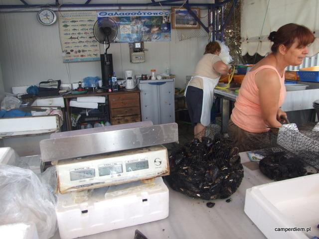 stoisko rybne w Ormos Panagias