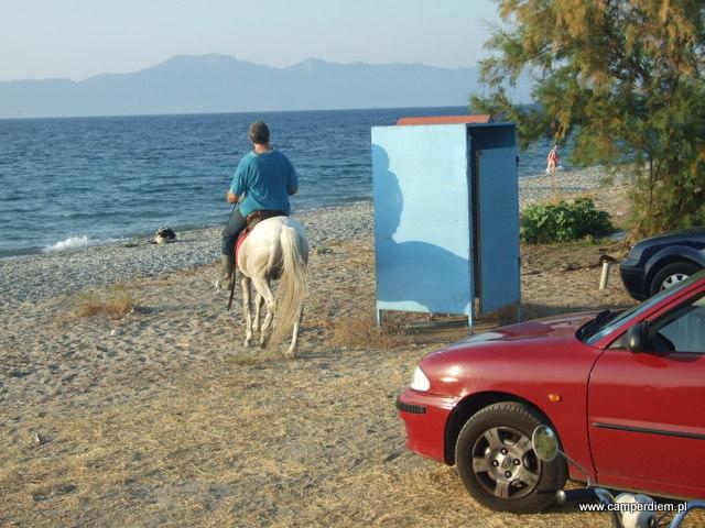 koń na plaży Kantadika