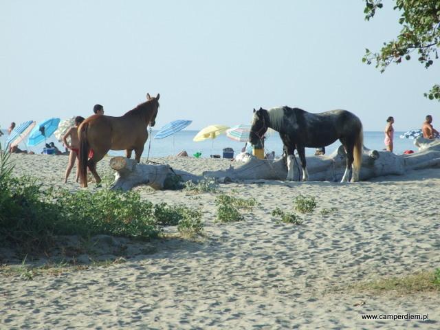 na plaży w Stomio