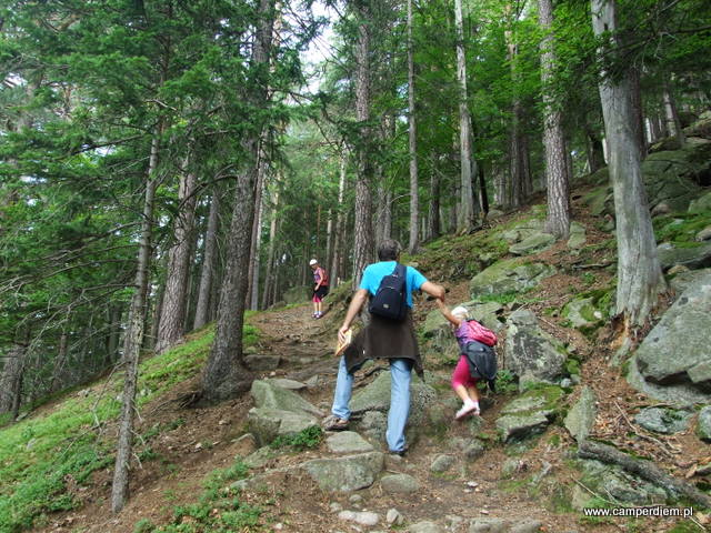góra Karpatka